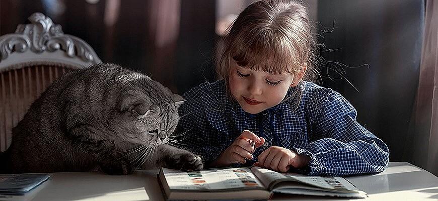 девочка и кот читают книгу